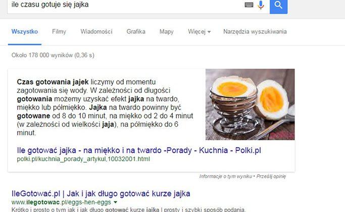 zapytanie w wyszukiwarce